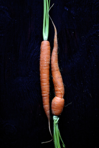 carrot-salad-1