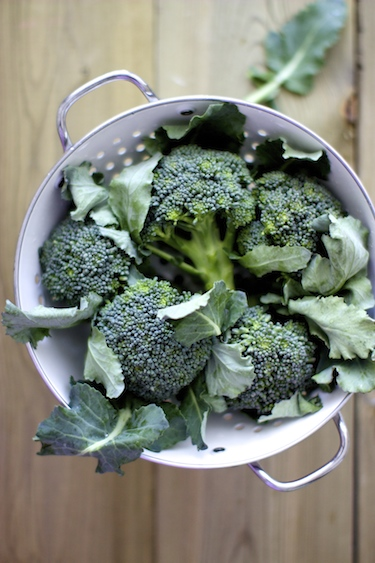 broccoli-salad-7